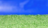 כיצד בוחרים משטחי דשא סינטטי לחצר הבית?